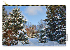 Winter Scenery Carry-all Pouch by Teresa Zieba