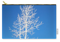 Winter Sky Carry-all Pouch