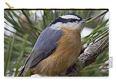 Winter Visitor - Red Breasted Nuthatch Carry-all Pouch