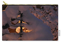 Winter Whirligig Carry-all Pouch by Jim Brage