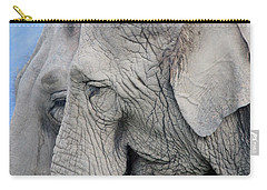 Wisdom With Age Carry-all Pouch