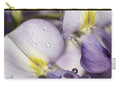 Wisteria Carry-all Pouch by Richard Thomas
