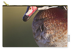 Carry-all Pouch featuring the photograph Wood Duck Portrait by Bryan Keil