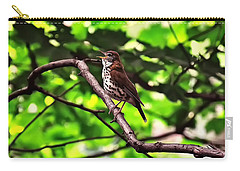 Wood Thrush Singing Carry-all Pouch by Chris Flees