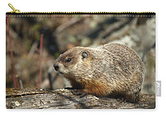 Carry-all Pouch featuring the photograph Woodchuck by James Peterson