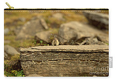 Woodland Critter Carry-all Pouch