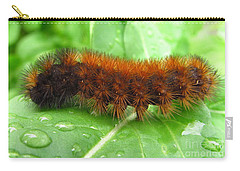 Wooly Bear  Carry-all Pouch