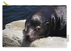 Wounded Sea Lion Resting Carry-all Pouch by Susan Wiedmann