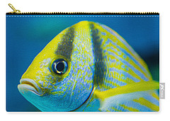 Atlantic Porkfish Carry-all Pouch