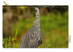 Yellow Crowned Night Heron Dune Watch Carry-all Pouch