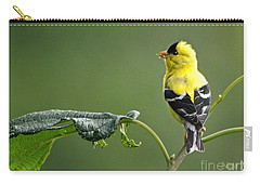 Carry-all Pouch featuring the photograph Yellow Finch by Nava Thompson