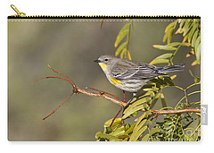 Yellow Rumped Warbler Carry-all Pouch by Bryan Keil