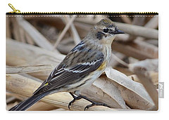 Carry-all Pouch featuring the photograph Yellow-rumped Warbler by Debra Martz