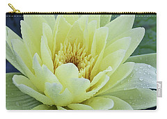 Yellow Water Lily Nymphaea Carry-all Pouch