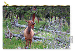 Yellowstone Moments. Doe Carry-all Pouch