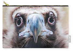 Carry-all Pouch featuring the photograph Young Baby Vulture Raptor Bird by Alex Grichenko