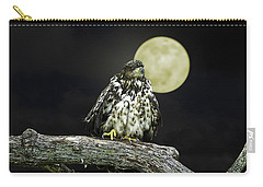 Carry-all Pouch featuring the photograph Young Bald Eagle By Moon Light by John Haldane