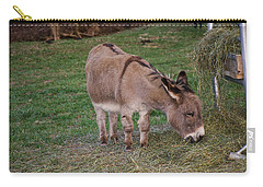 Young Donkey Eating Carry-all Pouch by Chris Flees