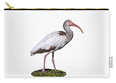 Carry-all Pouch featuring the photograph Young Ibis Gazing Upwards by John M Bailey