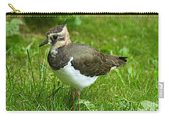 Young Lapwing Carry-all Pouch