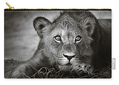 Young Lion Portrait Carry-all Pouch