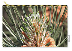 Carry-all Pouch featuring the photograph Young Pine Cone  by Ramabhadran Thirupattur
