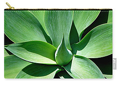 Yucca Sun Carry-all Pouch