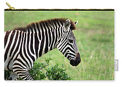 Zebra Carry-all Pouch by Aidan Moran