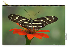 Zebra Longwing Butterfly Carry-all Pouch by Liz Masoner