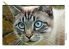 Zing The Cat Upclose Carry-all Pouch