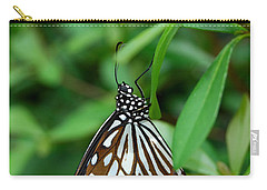 Carry-all Pouch featuring the photograph  Blue Tiger Butterfly by Eva Kaufman