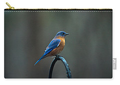 Eastern Bluebird On Perch 2 Carry-all Pouch
