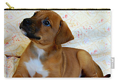 Carry-all Pouch featuring the photograph   Take Me Home Please by Peggy Franz