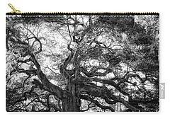 Carry-all Pouch featuring the photograph Angel Oak by Lynne Jenkins