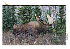 Carry-all Pouch featuring the photograph Big Boy by Doug Lloyd