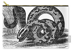 Boa Constrictor Carry-all Pouch by Granger