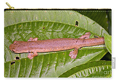 Bolitoglossine Salamander Carry-all Pouch