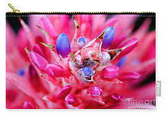 Bromeliad Carry-all Pouch