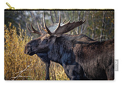 Bull Moose Carry-all Pouch by Ronald Lutz