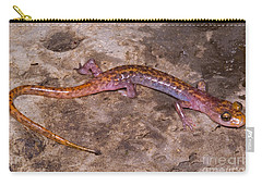 Cave Salamander Carry-all Pouch