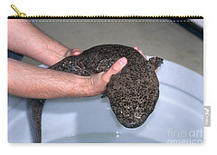Chinese Giant Salamander Carry-all Pouch by Dante Fenolio