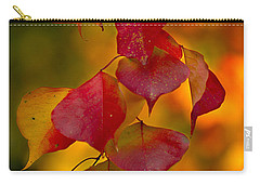 Carry-all Pouch featuring the photograph Fall Color 1 by Dan Wells