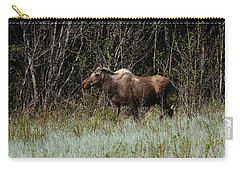 Carry-all Pouch featuring the photograph Feeding Along by Doug Lloyd