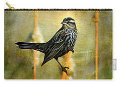 In The Limelight Carry-all Pouch by Blair Wainman