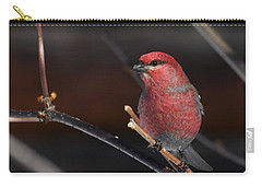 Male Pine Grosbeak Carry-all Pouch