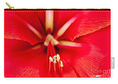 Carry-all Pouch featuring the photograph Red Amaryliss by Les Palenik