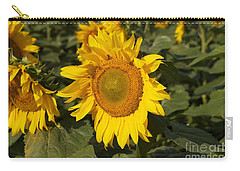 Carry-all Pouch featuring the photograph Sun Flower by William Norton