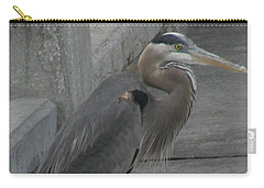 Great Blue Heron Carry-all Pouch by Donna Brown