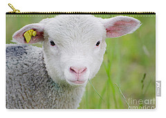 Young Sheep Carry-all Pouch