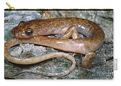 Cave Salamander Carry-all Pouch by Dante Fenolio